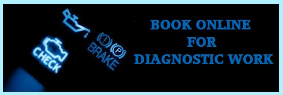 book in the diagnostic work online